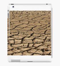 Cracking iPad Case/Skin