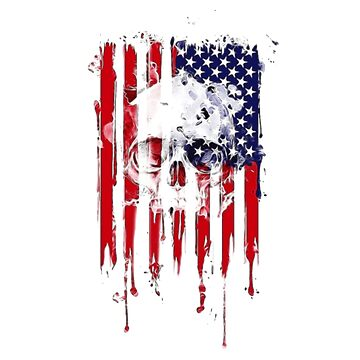 American Flag With Skull by ClothingSimple