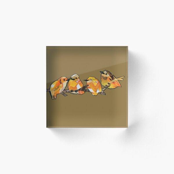 Orange quartet  Acrylic Block
