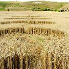 Crop Circle by Arie van der Wijst