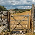 Pen-Y-Ghent from Langcliffe by RamblingTog