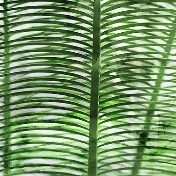 Tropical Palm Leaf by cafelab