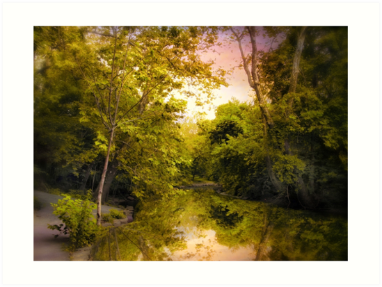 Reflecting on Spring by Jessica Jenney