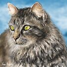 Painting of a Gorgeous Furry Gray Cat by ibadishi