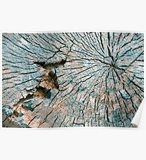 Cut Tree Abstract Poster