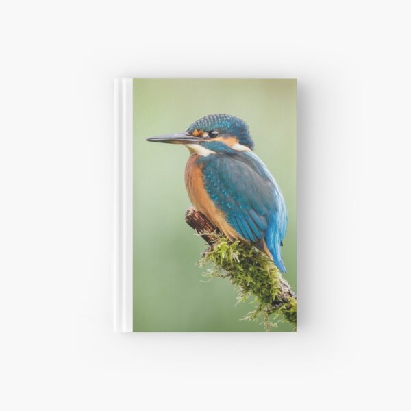 Kingfisher Perched Hardcover Journal