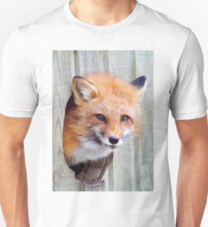 Red Fox Hole T-Shirt