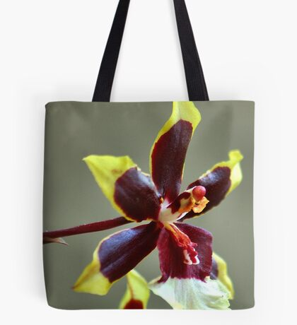 orchid species - ONCIDIUM Tote Bag