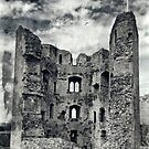 Raglan Castle by Country  Pursuits