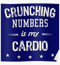 Humorous Accountant Shirt Crunching Numbers Poster