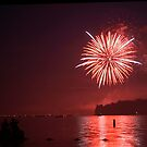 Fireworks over a lake by Don Cox