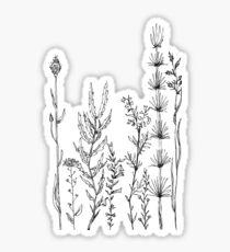 Wildflower Zeichnung Skizze Sticker