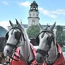 Classic Austria. by oddoutlet