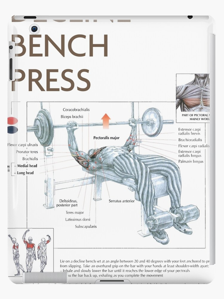 Astonishing Decline Bench Press Exercise Diagram Ipad Case Skin By Superfitstuff Beatyapartments Chair Design Images Beatyapartmentscom