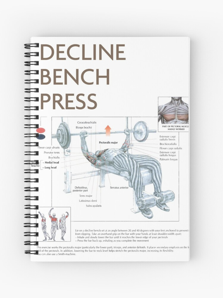 Pleasing Decline Bench Press Exercise Diagram Spiral Notebook Ibusinesslaw Wood Chair Design Ideas Ibusinesslaworg