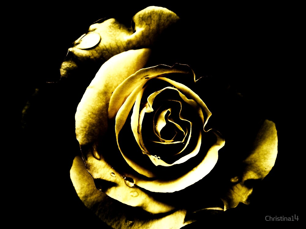 Golden Tears by Christina14