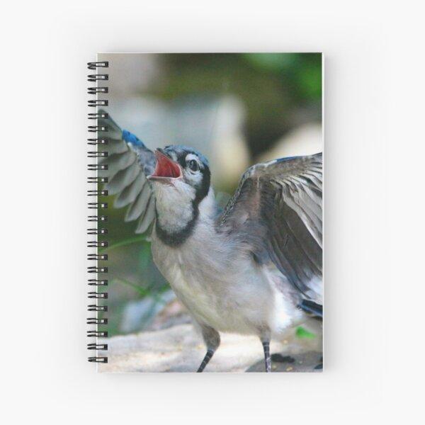 Baby Jay Spiral Notebook