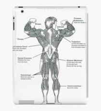 Anatomy Diagram - Muscle Chart (Back) iPad Case/Skin