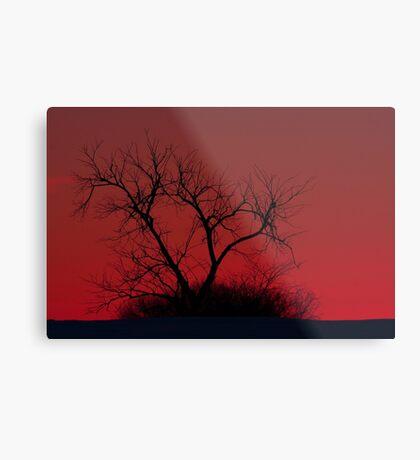 Red sky at night - Bare Tree Metal Print