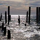 Port Willunga Jetty 2 by Topher Webb