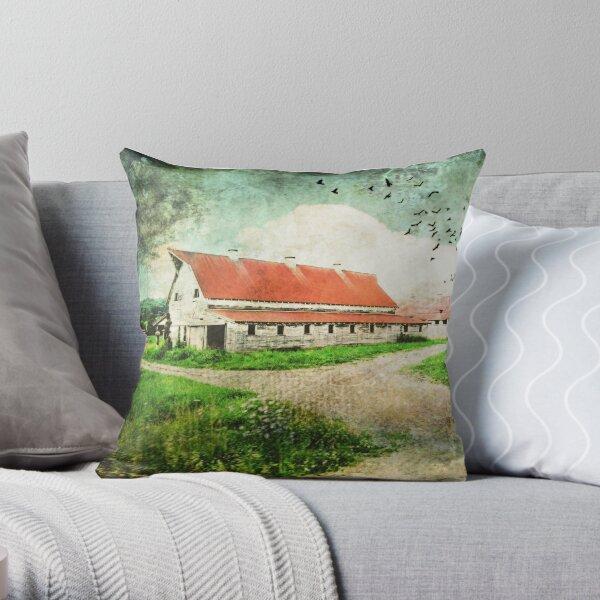 Tin Red Roof Throw Pillow