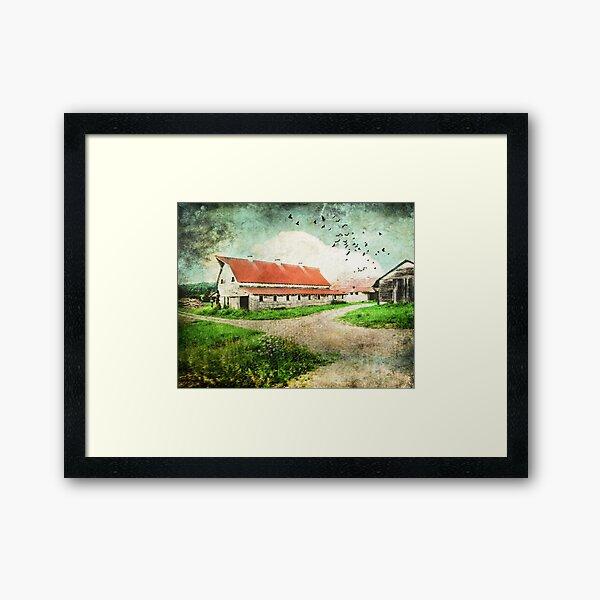 Tin Red Roof Framed Art Print