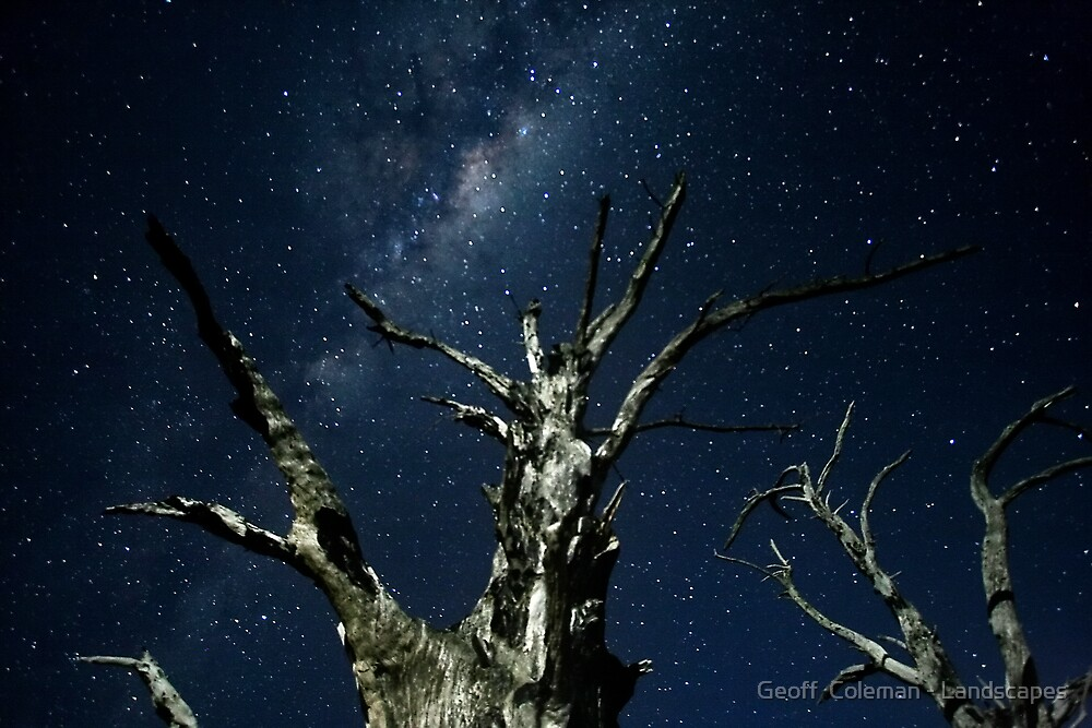 Dance to the End of Time #3 by Geoff  Coleman - Landscapes