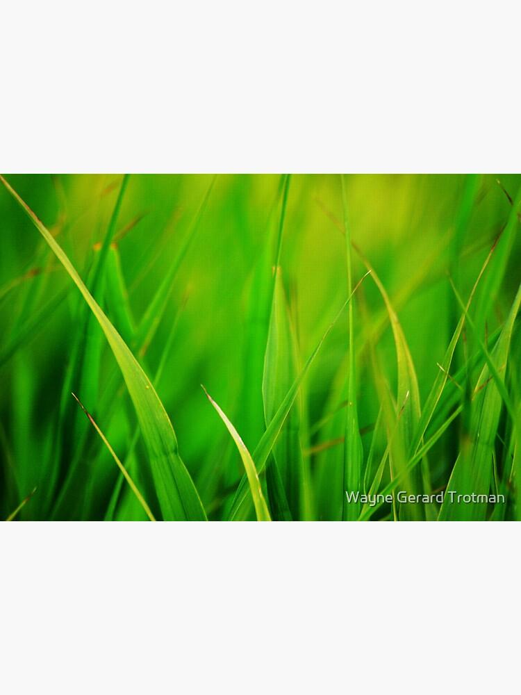Green by redmoondragon