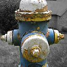 Fire Hydrant by Jennifer  Burgess