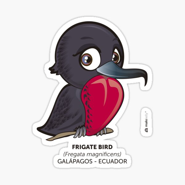 Frigate Bird Sticker