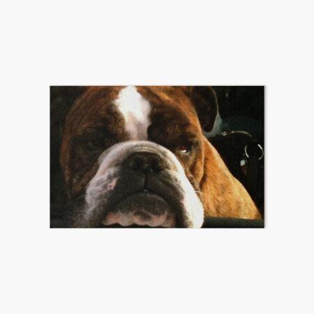 Dibble the Dog Art Board Print