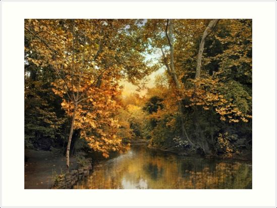 Riverbank Reflection by Jessica Jenney
