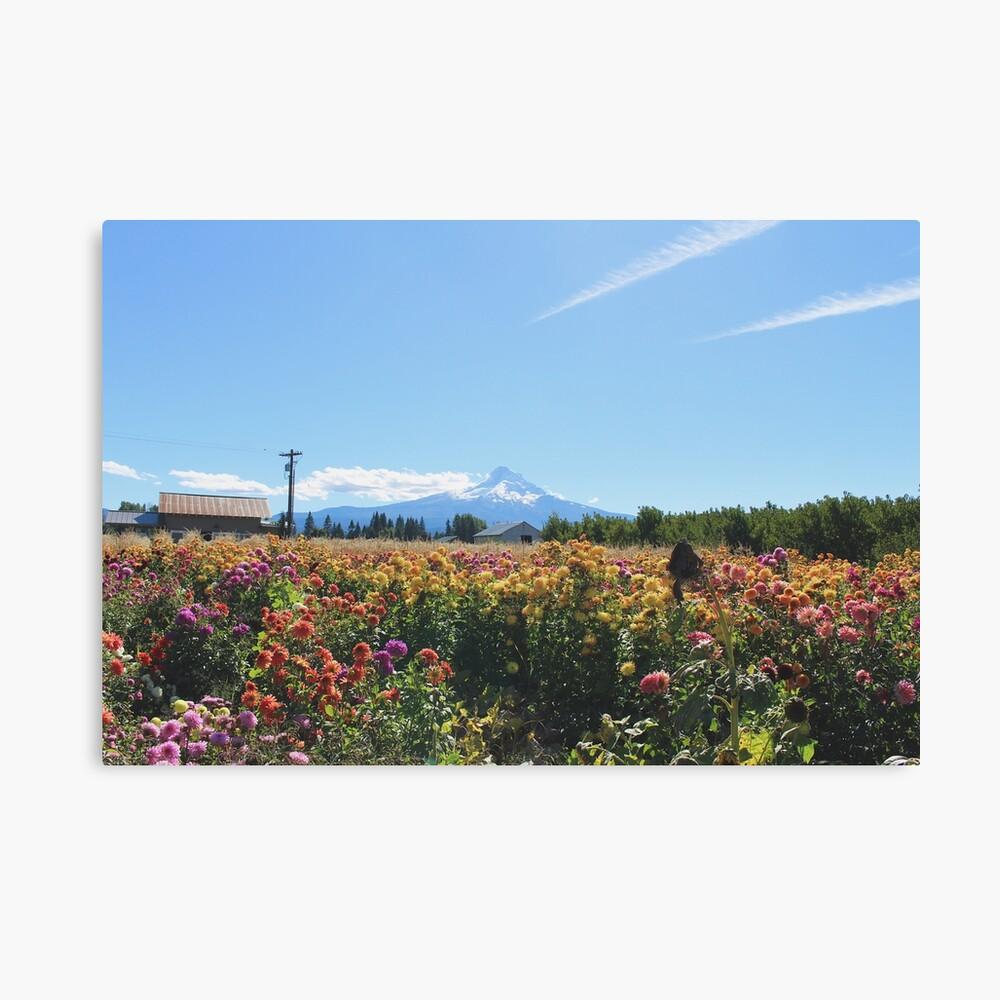 Mount Hood bei Draper Girls Country Farm Leinwanddruck