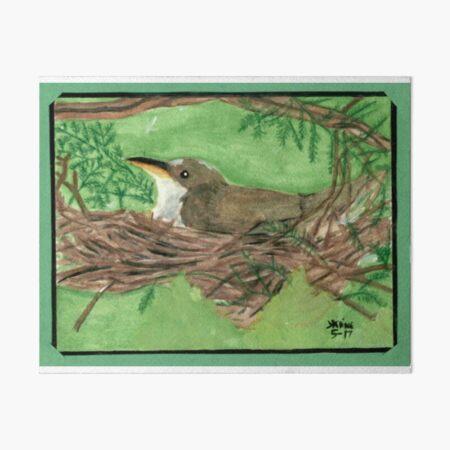 Nesting Wren Art Board Print
