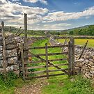 A Yorkshire Dales Footpath by RamblingTog
