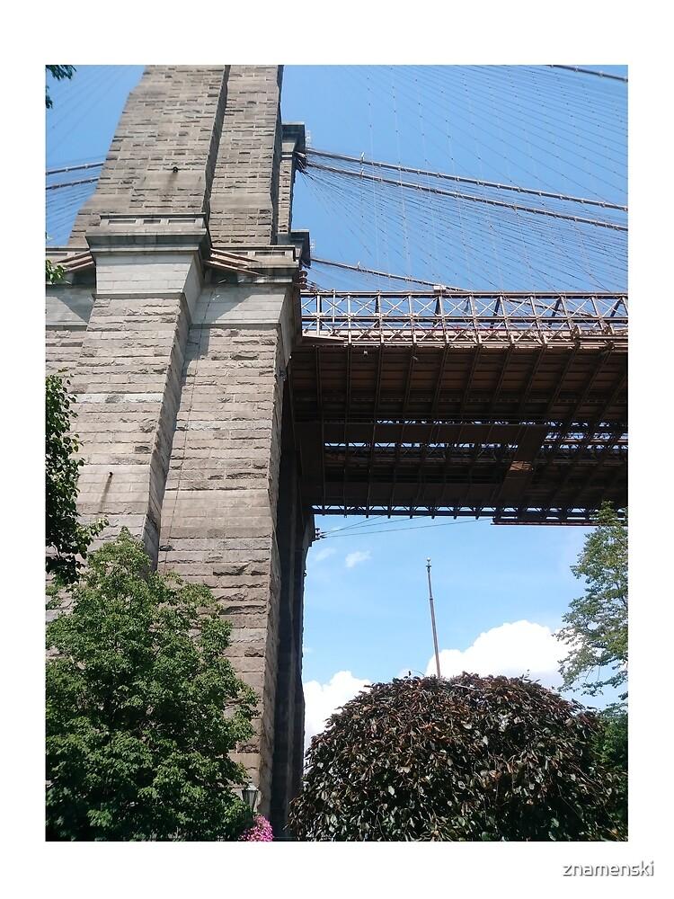 Brooklyn bridge, #Brooklyn, #bridge, #BrooklynBridge by znamenski