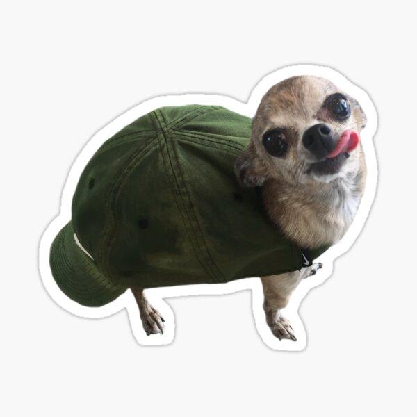 Turtle Doggo Sticker