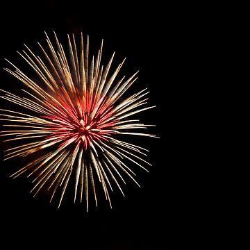 Firework by Paulie-W