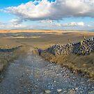 Mastiles Lane by RamblingTog
