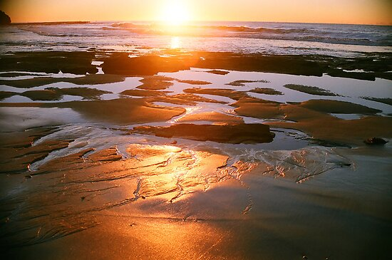 red gold sandy morning by Juilee  Pryor