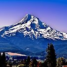 Mt. Hood at her Finest ! by Nancy Richard