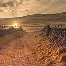 A Yorkshire Dales Lane by RamblingTog