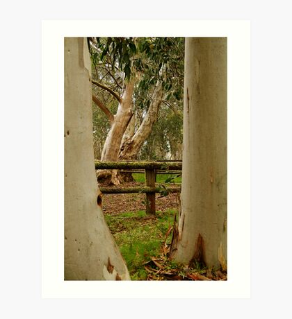 Old Cattle Yard,Davies High Plains.Victorian High Country Art Print