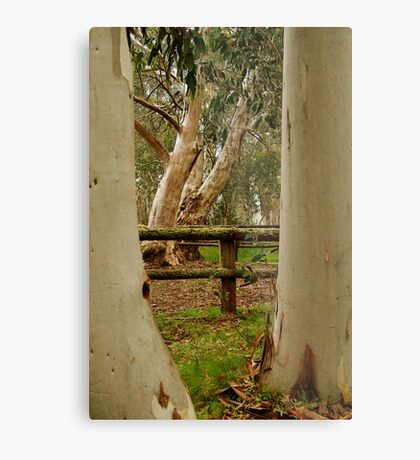 Old Cattle Yard,Davies High Plains.Victorian High Country Metal Print