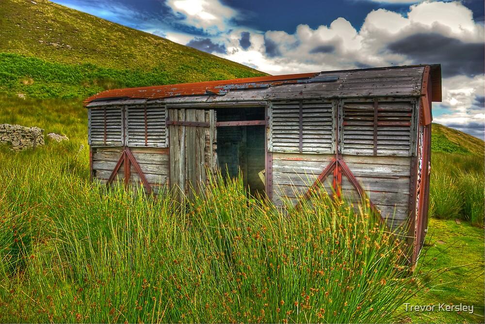 Abandoned Wagon #3 by Trevor Kersley
