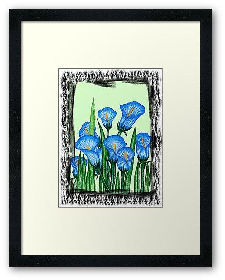 Lily  by Nancy Shields