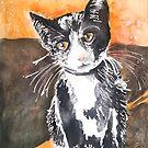 Tuxedo Cat by Emma Kaufmann