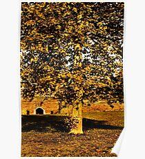 Autumn Boredom Fine Art Print Poster