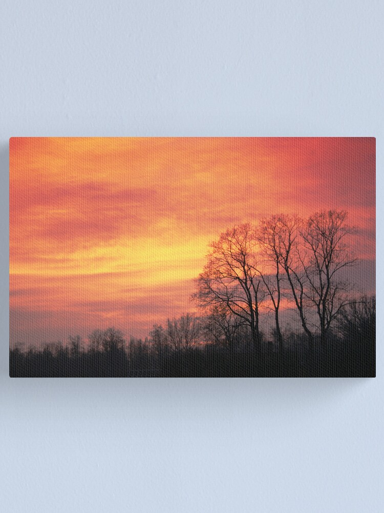 Alternate view of Winter sky Canvas Print