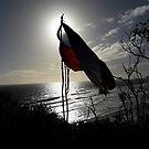 The Chilean Flag by Madalena Lobao-Tello